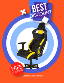 Buy Gaming Chair With Free Shipping!