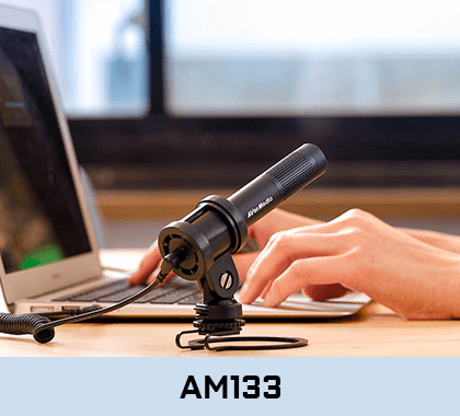 Buy AVerMedia AM133